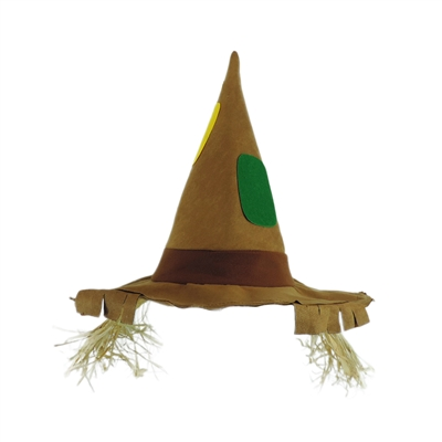 Pointed Scarecrow Raggedy Costume Hat w/ Raffia Hair